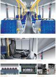 Buona alta qualità di reputazione il bus