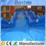 En14960は販売のための屋外の巨大で膨脹可能なスライドを証明した