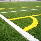 Het milieu Oude Kunstmatige Gras van het Gebruik van Voetbal
