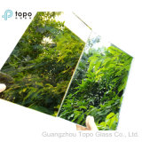 стекло зеркала от 3mm до 8mm цветастое (M-C)