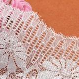 Шнурок тканья вышивки тканей шнурка нового модельера прибытия химически