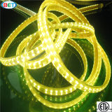 LED de linha dupla LED Strip Light RGB Outdoor LED Ribbon 110V / 220V