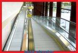 Engel 12 und 800mm Ladeplatten für beweglichen Gehweg