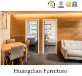 간단한 작풍 놓이는 온난한 색깔 시리즈 아파트 가구 (HD004)