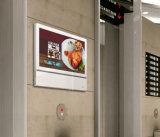 señalización de Digitaces del jugador del indicador digital de 21.5-Inch LCD para el elevador que hace publicidad del jugador