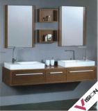 Mur-Monter le Cabinet de salle de bains (VS-66)