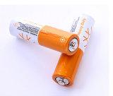 La batterie principale AA batterie rechargeable Batterie sèche 1,5V Non