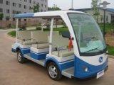 عربة كهربائيّة زار معلما سياحيّا ([هإكس-غد09])