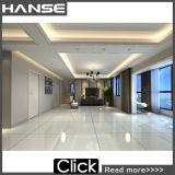 HD8411p Foshan Grade un carrelage de sol panneaux de porcelaine mince