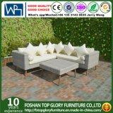 PE плетеной мебели из алюминия и диван в саду (TG-6005)