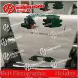 Roll Printing Machineへの自動的にPlastic Roll