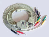 Marquette cable ECG 10 dérivations103-01 (U)