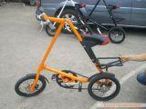 Strida 자전거 (004)
