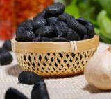 Schwarzer Knoblauch-guter Geschmack gegorene Qualität