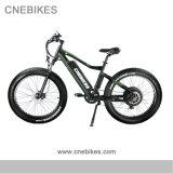 bicicletta elettrica grassa/Ebike di 48V 750W da vendere