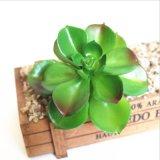 Зеленый искусственные цветы сочные растения декор пружины
