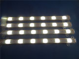 Tira flexible del precio directo 5050 LED de la fábrica con el tubo de goma