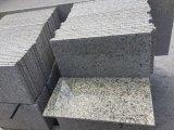 Losa de Piedra de mármol y granito para la lápida, pavimentación, encimera, Jardín