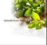 Höhe in Süsse-Stoffenzymatisch geändertem rohem Stevia