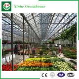 زجاجيّة دفيئة زراعة فوق الماء نظامة لأنّ خضر/زهرات/ثمرة
