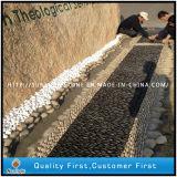 رخيصة طبيعيّ أسود/صفراء/بيضاء حصاة حجارة لأنّ حديقة فسيفساء