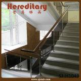 De Balustrade van het Glas van het roestvrij staal met Leuning voor Trap (sj-S090)