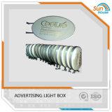 Rundes Acrylic Light Box für Advertizing