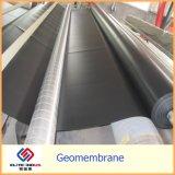 Fornitore professionista di Geomembrane dell'HDPE della Cina ASTM che coltiva i materiali