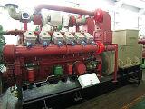 Avespeed 500kw cokéfaction ensemble/GROUPE ÉLECTROGÈNE générateur de gaz