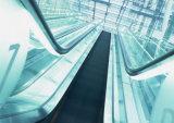 Dsk à haute efficacité énergétique se déplaçant à pied sûr et fiable