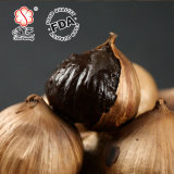 よい好みによって発酵させる単一の黒いニンニク(500g/bag)