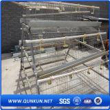 Couche de poulet de cage de treillis métallique pour des fermes du Kenya