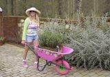 Тележка кургана колеса цветка руки садовничая для тележки инструмента сада