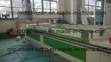 Engraver di CNC di falegnameria 3D con lo scarico del sistema