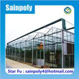 コマーシャルのための中国の緩和されたガラスの温室