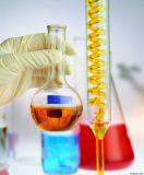 修正されたスチレンアクリレイトの乳剤Rg-B20013