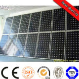 Mono /Poly Solar Panel per Solar Power Project