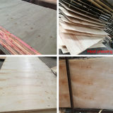 Rayonner les matériaux intérieurs de décoration d'utilisation de contre-plaqué de pin