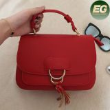 Hot Classcial Style Crossbody Bags Luxury Designer Women Handbags com Tassel Sy8130