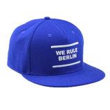 さまざまなカラー3D刺繍の平らな縁の急な回復の帽子