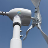 генератор ветра 600W с регулятором гибрида MPPT
