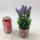 Bonsais artificiais cerâmicos coloridos da alfazema das plantas