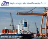 Seefracht-Ozean-Verschiffen von Ningbo, Shanghai nach Manila Philippinen