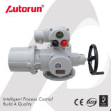 Actuator van het Type van Klep van de Poort van de Leverancier van Wenzhou Gespleten Multi-Turn Elektrische