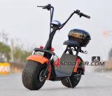 성인을%s 1000W/1500W 2 바퀴 전기 스쿠터 Citycoco