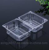ein transparente Wegwerffrucht-Plastikpaket-Haustier hat einen Nahrungsmittelobst- und gemüse-Kasten