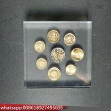 Acrílico cubo de metacrilato pisapapeles moneda incrustación