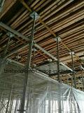 Échafaudage galvanisé de Ringlock peint par HDG pour la construction de construction