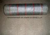 Плетение провода PVC Coated шестиугольные/сетка мелкоячеистой сетки для курятника