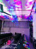 19* 15W RGBW 4 in 1 Bienen-Augen-beweglichem Hauptlicht des LED-Bienen-Augen-Light/LED